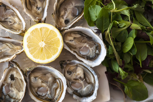 specialty oysters